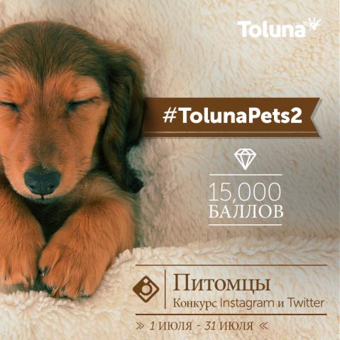 TolunaPets2_RU